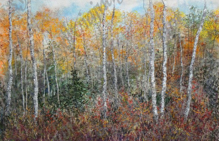 In The Aspen Woods