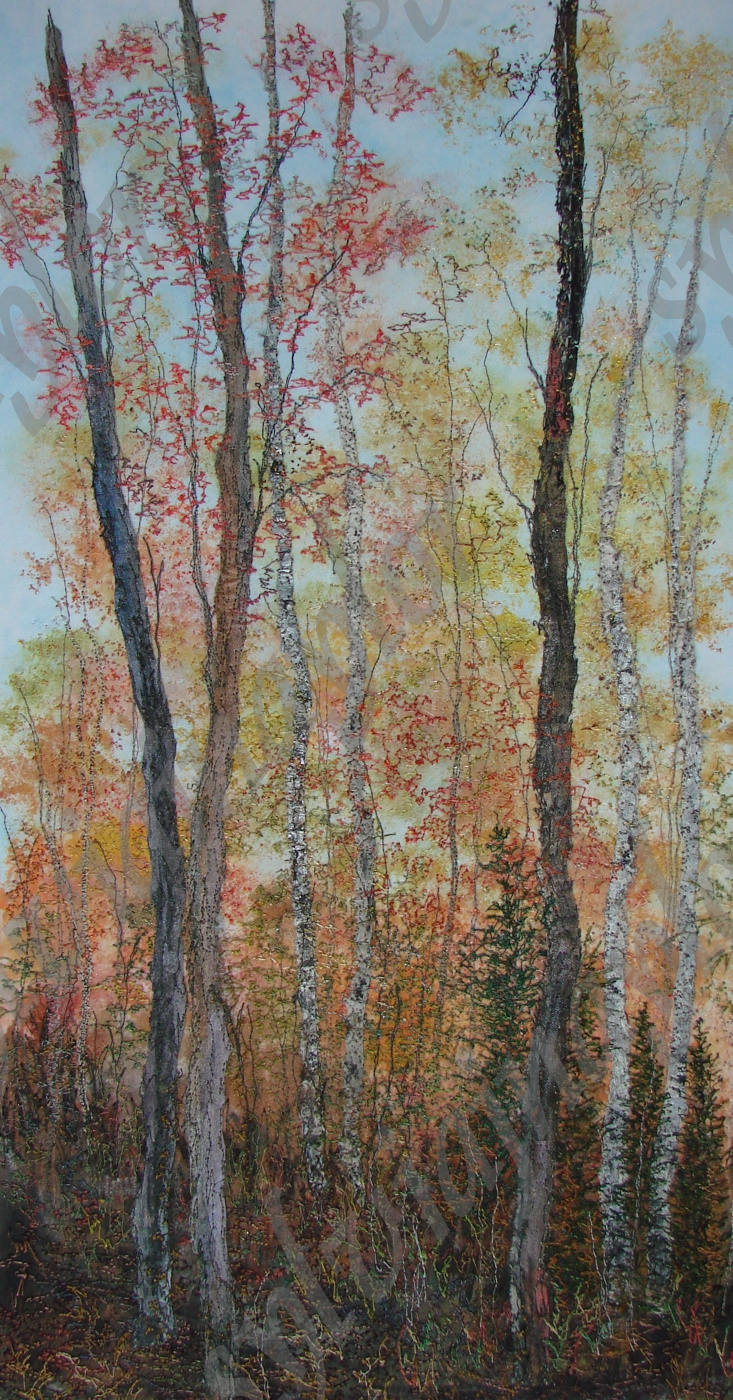 fall in the boreal forest