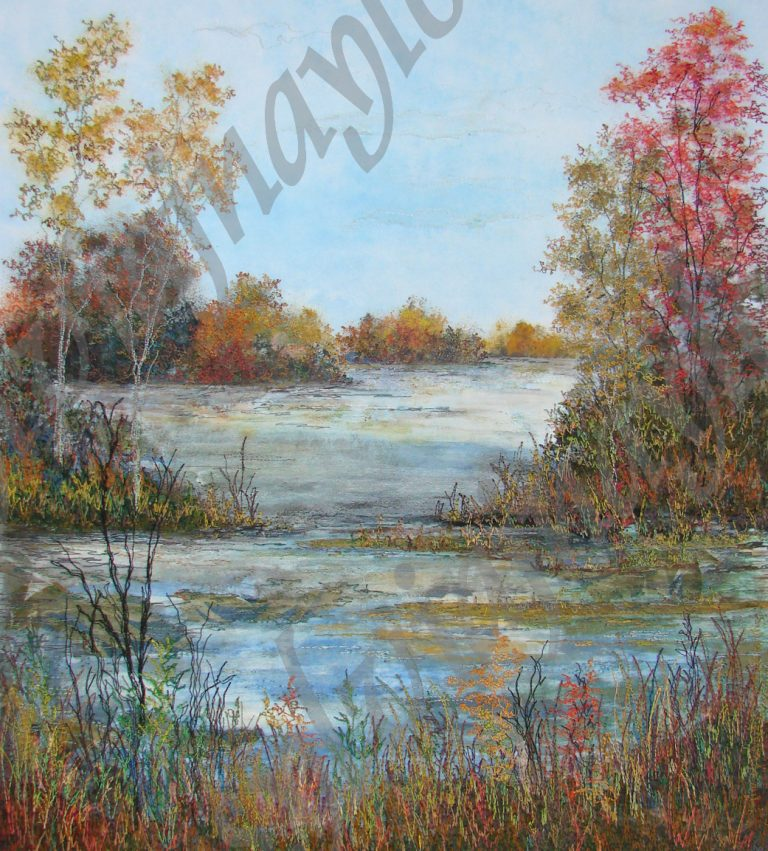 fall in the wetlands