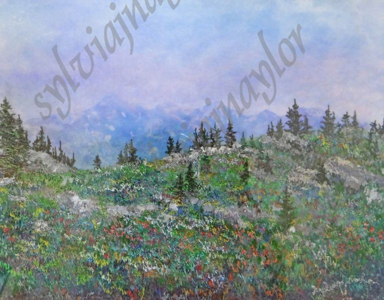 wildflowers of the mountains